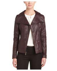 T Tahari   Purple Angelina Zip Collar Leather Jacket   Lyst