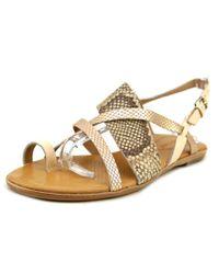 Corso Como | Multicolor Carnival Women Open Toe Leather Tan Gladiator Sandal | Lyst