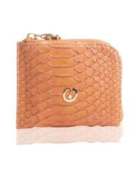 Nada Sawaya - Orange Medium Zip Around Python Wallet - Lyst