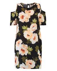 Boohoo - Black Tilly Cold Shoulder Floral Shift Dress - Lyst