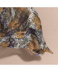 Burberry Brit | Blue British Seaside Print Cotton Cashmere Scarf Bright Navy | Lyst