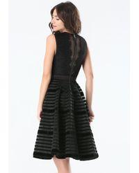 Bebe   Black Velvet Stripe Midi Dress   Lyst