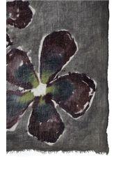 Franco Ferrari - Black Floral Ink Wool-cashmere Scarf - Lyst