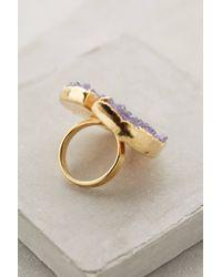 Dara Ettinger - Purple Pallanza Druzy Ring - Lyst