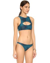 Mikoh Swimwear - Blue Marrakesh Crop Bikini Top - Lyst