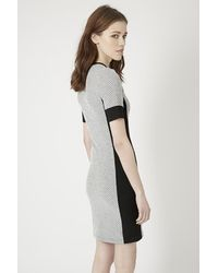 TOPSHOP | Gray Tall Geo Panel Bodycon Dress | Lyst