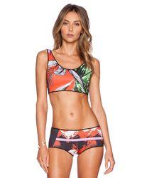 Clover Canyon - Multicolor Secret Garden Reversible Bikini Top - Lyst