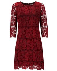 Almost Famous | Red Lace Swing Dress | Lyst