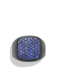 David Yurman | Black Pave Signet Ring With Sapphires for Men | Lyst