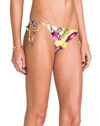 Zimmermann - Multicolor Vivid Wrap Frill Tri Bikini in Pink - Lyst