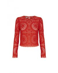Temperley London | Red Nomi Lace Crop Top | Lyst