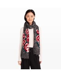 Club Monaco | Gray Willonah Rose Intarsia Scarf | Lyst