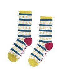 Seasalt - Green Womens Sailor Socks (ss17) - Lyst