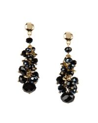 Ted Baker | Black Beaded Cluster Earring | Lyst