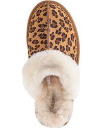 UGG | Multicolor Scuffette Ii Slipper Leopard | Lyst