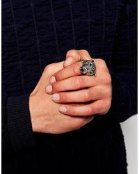 ASOS | Metallic Bear Ring for Men | Lyst