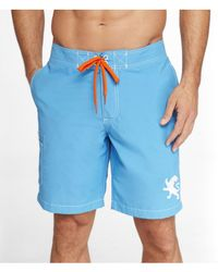 Express - Blue 9 Inch Large Lion Board Shorts for Men - Lyst