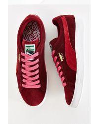 PUMA | Purple Suede Classic Plus Sneaker | Lyst