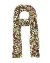 Patricia Nash | Natural Denim Fields Collection Floral Scarf | Lyst
