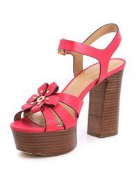 MICHAEL Michael Kors - Pink Tara Floral Applique Block Heel Platform Dress Sandals - Lyst