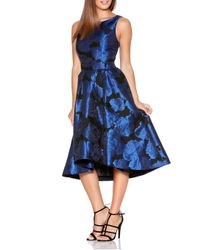 Dorothy Perkins - Quiz Royal Blue Jacquard Dress - Lyst