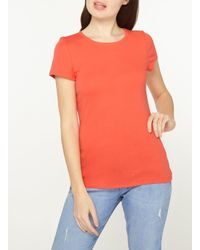 Dorothy Perkins - Orange Tangerine Cotton T-shirt - Lyst