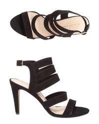 Dorothy Perkins | Black Lily & Franc Jaz Strap Heeled Sandals | Lyst