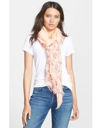 Hinge - Natural 'Delicate Vines' Embroidered Scarf - Lyst