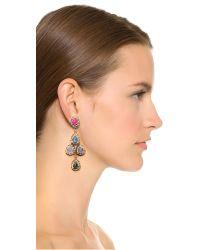 Erickson Beamon - Metallic Teardrop Earrings - Gold Multi - Lyst