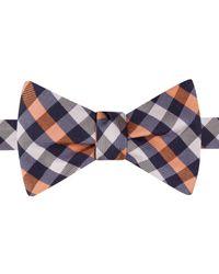 Tommy Hilfiger | Orange Gingham Self-tie Bow Tie for Men | Lyst