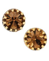 Lauren by Ralph Lauren - Brown Gold-Tone Small Topaz Faceted Stone Stud Earrings - Lyst