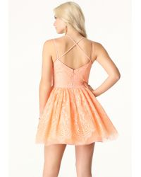 Bebe | Pink Lace Fit & Flare Dress | Lyst