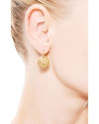 Yossi Harari - Metallic Small Round Lace Earrings with Single Champagne Diamonds - Lyst