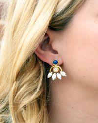 Lizzie Fortunato | Blue Oaxaca Blossom Earrings | Lyst