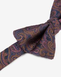 Ted Baker | Purple Silk Paisley Bow Tie for Men | Lyst