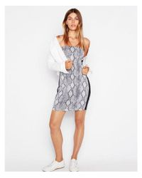 Express - Gray Side Stripe Snake Print Tube Dress - Lyst