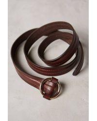 Anthropologie - Brown Cadre Noir Belt - Lyst