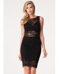 Bebe   Black Shannel Lace Detail Dress   Lyst