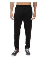 Adidas Originals - Black Core 15 Training Pant for Men - Lyst