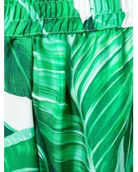 Dolce & Gabbana - Green Tropical Shorts - Lyst