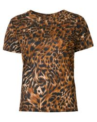 Saint Laurent | Brown Leopard And Feather Print T-shirt | Lyst