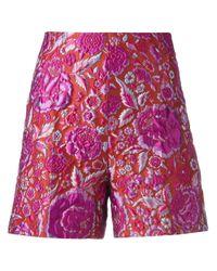 Ermanno Scervino | Multicolor Jacquard Shorts | Lyst