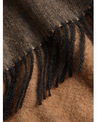 Burberry - Brown Bandana Scarf - Lyst