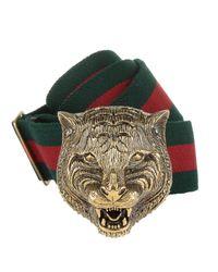 Gucci - Green Tiger Head Buckle Elastic Belt Rosso/verde for Men - Lyst
