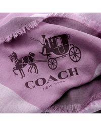 COACH | Purple Metallic Windowpane Challis Scarf Mauve | Lyst