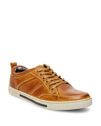Steve Madden | Brown Leather Sneakers for Men | Lyst