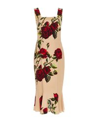Dolce & Gabbana | Natural Brushstroke Print Dress | Lyst