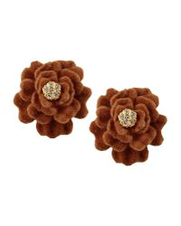 Gogo Philip - Brown Earrings - Lyst