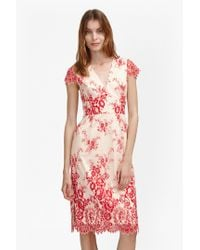 French Connection | Natural Rosalie Lace Tea Dress | Lyst