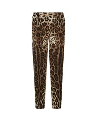 Dolce & Gabbana | Brown Leopard Print Slim Denim Trousers | Lyst
